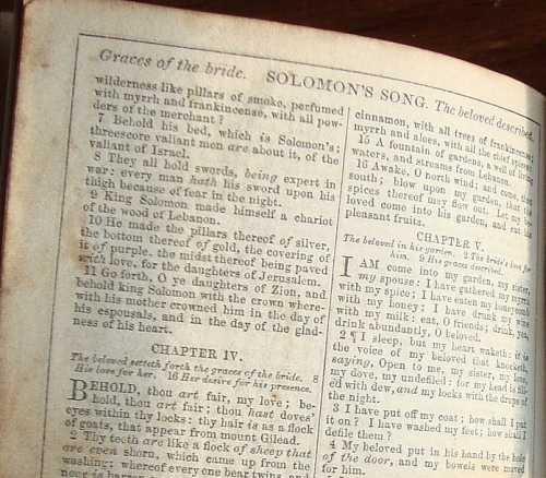 1861 bible detail
